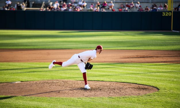 Late Rally Not Enough in Final Game of Tennessee Series
